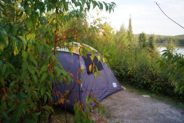 Many opt to hike to a Boundary Waters campsite, but there are many less rustic lodging options within Ely as well. When you're tired from your outdoor adventuring, you'll definitely find a place to sleep that suits you.