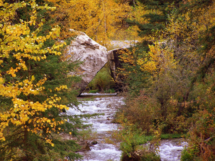 This area of the Black Hills is simply perfect in the fall in every way.