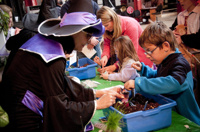 Or cultivate plants with magical properties in Herbology Class.