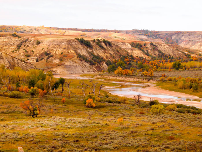 2. Theodore Roosevelt National Park North Unit Scenic Byway