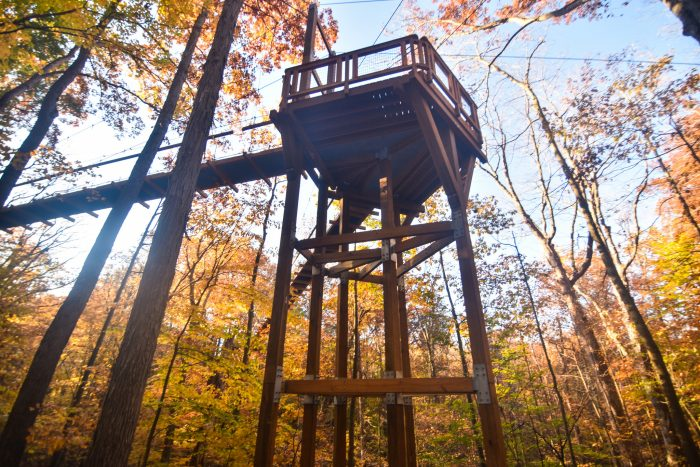 (If you're afraid of heights, this might be the perfect, peaceful way to conquer that fear.)