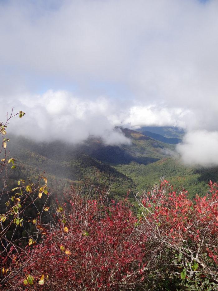 4. Chimney Tops Trail