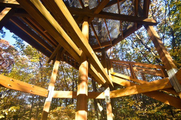 Tickets for both the canopy walk and emergent tower are $14 for adults and $6 for children ages 6 - 18. (Children 5 and younger are free.)