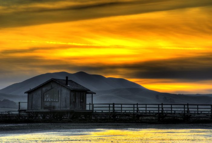 7. Nick's Cove: Tomales Bay