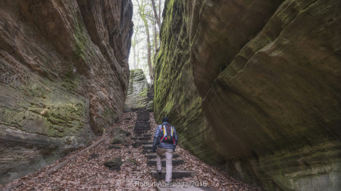The trail is a 1-mile loop that takes about an hour or so to complete. There are several stairs to climb, making it a fairly strenuous journey if you aren't used to hiking often.