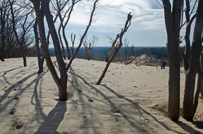 7. Warren Dunes State Park (Sawyer)