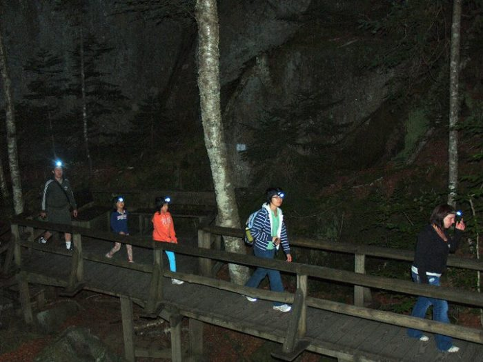 Lantern Tour will take you through the amazing natural scenery in the dark, allowing you to see the New Hampshire wilderness in a whole new way.