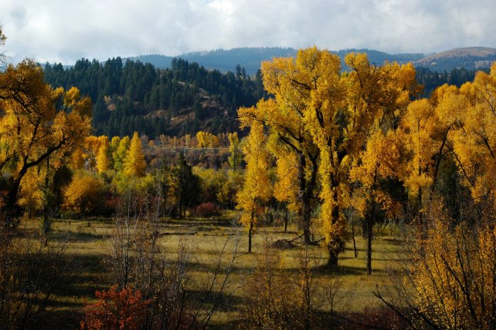 2. Grand Teton Scenic Byway