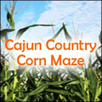 3. Cajun Country Corn Maze, Pine Grove