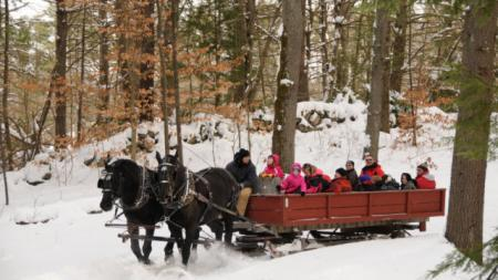 During the winter, the Farm is known for holiday festivals, but most famous for its horse-drawn sled rides, that are perfect for families, or a romantic date.