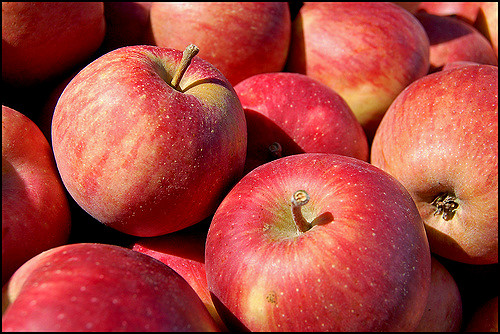 10. Eat store-bought apples in September or October. Fresh of the tree or bust!