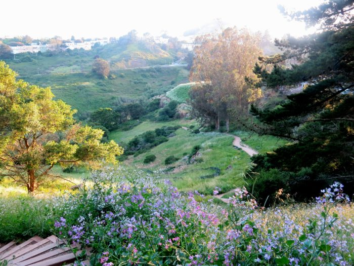1. Glen Canyon Park: Bosworth Street, San Francisco