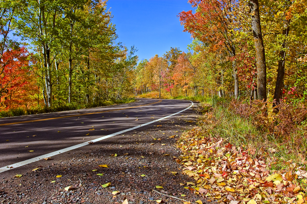 10 Country Roads In Minnesota To Drive In The Fall