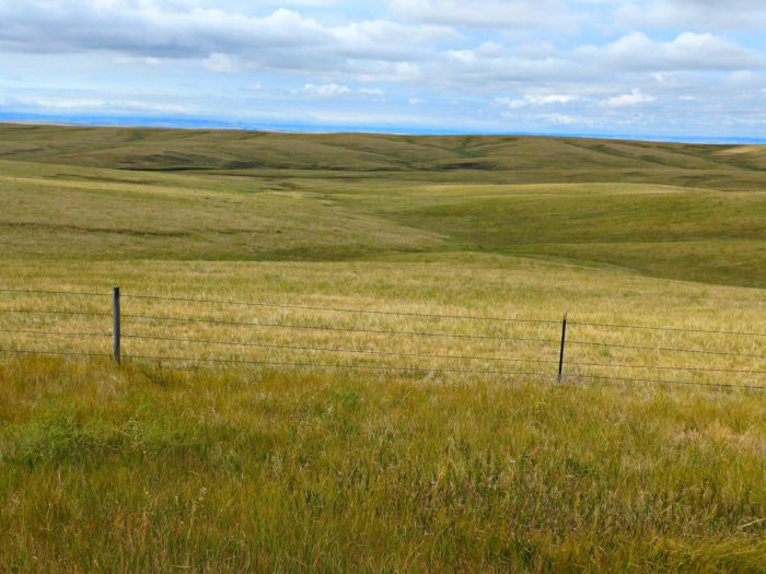 All of these spots are located in the beautiful Oglala National Grassland.