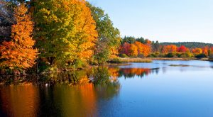 This Charming New Hampshire Town Is Perfect for An Autumn Day Trip
