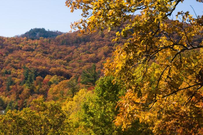 9. Vogel State Park—405 Vogel State Park Rd, Blairsville, GA 30512