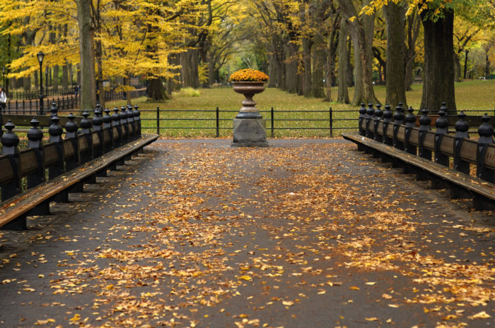 This stretch of Central Park is also known for having the widest pedestrian path, originally built to be accessible for the size of carriages.
