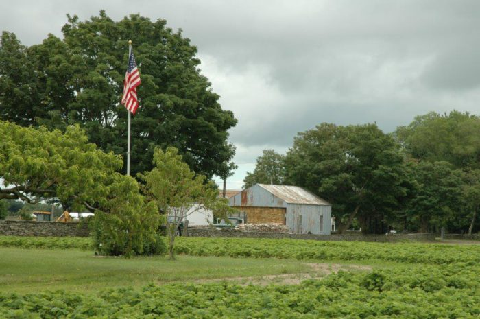 7. Quonset View Farm, Portsmouth