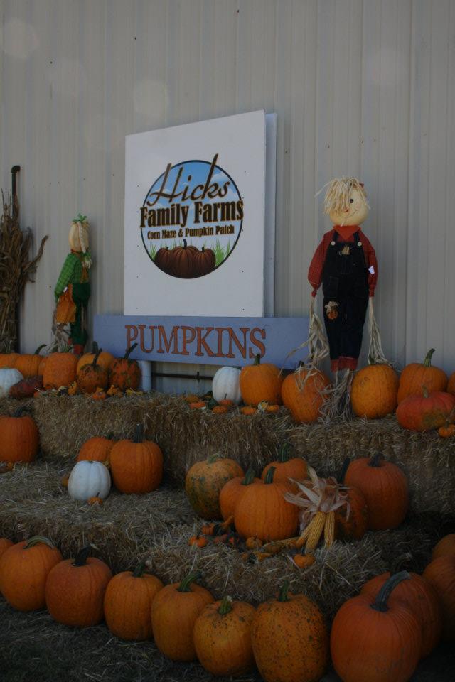 7. Hicks Family Farms (Lonoke)