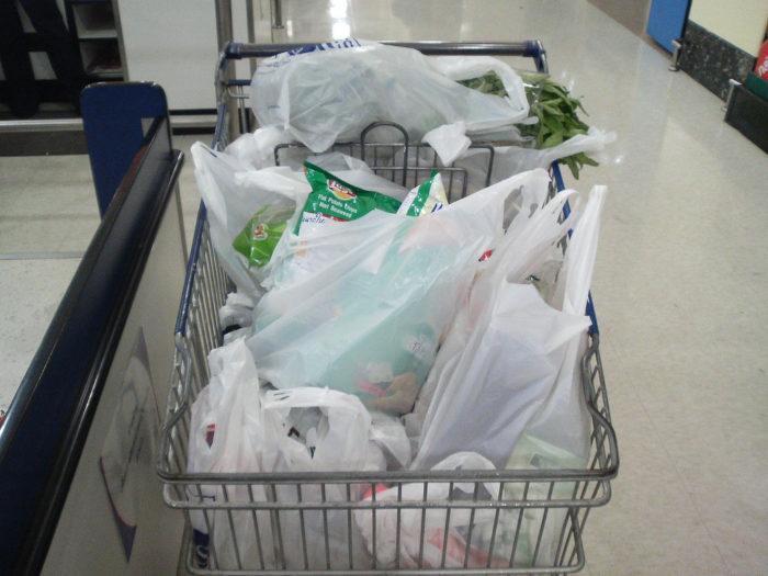6. Grocery Sack