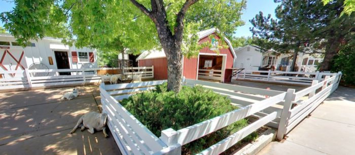 Before you head to your table, take time to explore all that this unique restaurant has to offer, including their Mini Farm...