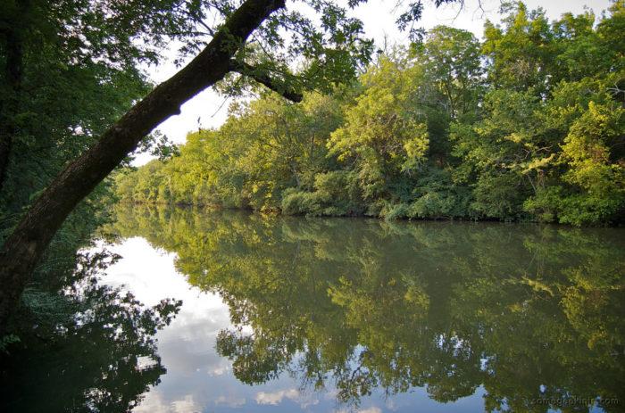 1. Stones River Greenway
