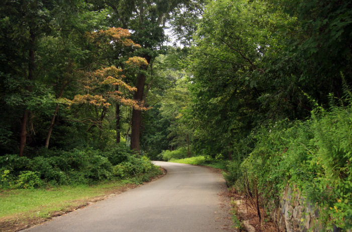 Located on a peninsula on Long Island, Caumsett State Historic Park Preserve is filled with history and unforgettable scenery.