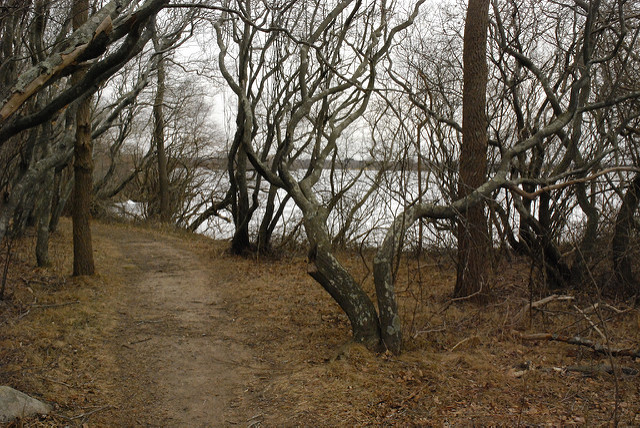 7. Trustom Pond, South Kingstown
