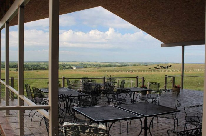 In 2016, the winery hired a talented executive chef to run their restaurant. You can now enjoy amazing gourmet meals - inside, or outside on the covered deck - while gazing out on the lovely surroundings.