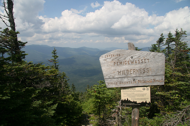 The Pemigewasset Wilderness area is a 45,000 acre part of the White Mountain National Forest. In the wilderness area, you can look over uninterrupted forest for miles and miles.
