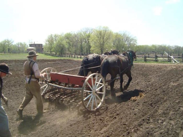 Of course, there will be animals as well. You'll get to experience firsthand just what it was like to plow a field with horses.