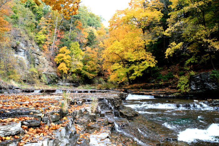 While you're in the area, you'll find even more waterfalls hiding on Fall Creek.