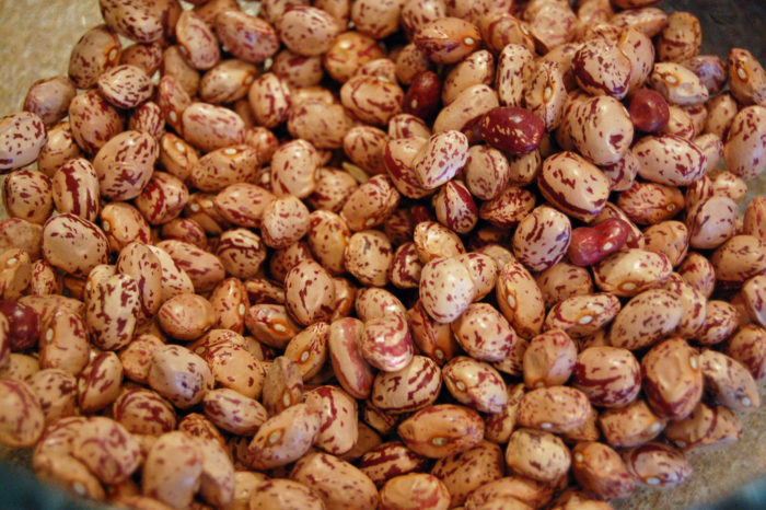 8. ... Navy and pinto beans...
