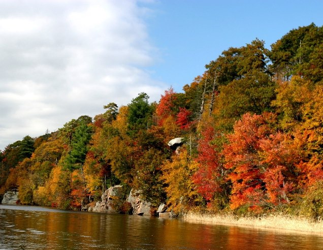 The Fall Foliage Tour is $16 for adults and $11 for children. Children under 2 are free!