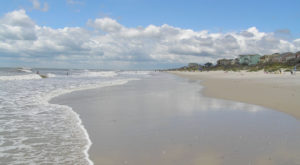 The Strangest Thing To Ever Wash Ashore In North Carolina