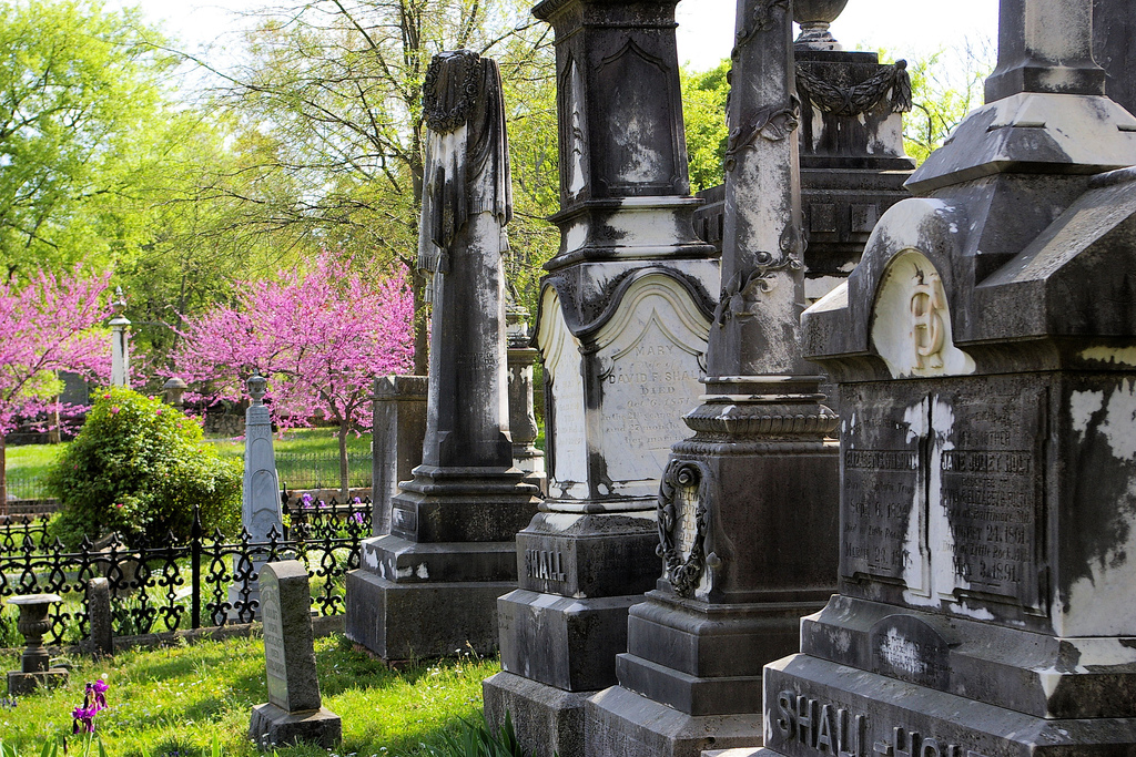 Chicago cemeteries search