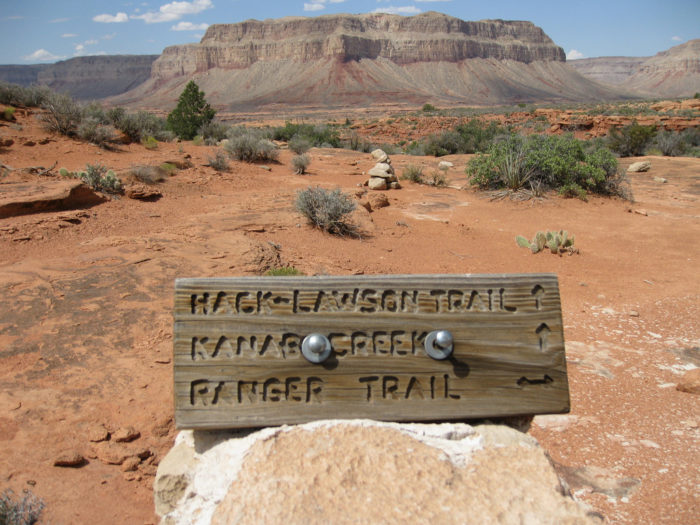 In addition to finding some incredible, scenic areas, you'll also find hiking trails and historic trails (like the Old Spanish and the Honeymoon Trails).