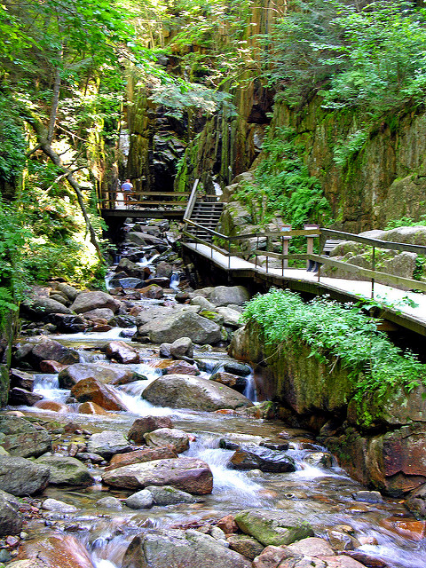 Flume Gorge extends for 800 feet at the base of Mount Liberty.  The area was formed by glaciers more than 200 million years ago.