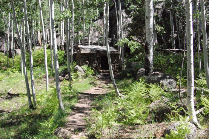 6. Veit Springs Trail (San Francisco Peaks)