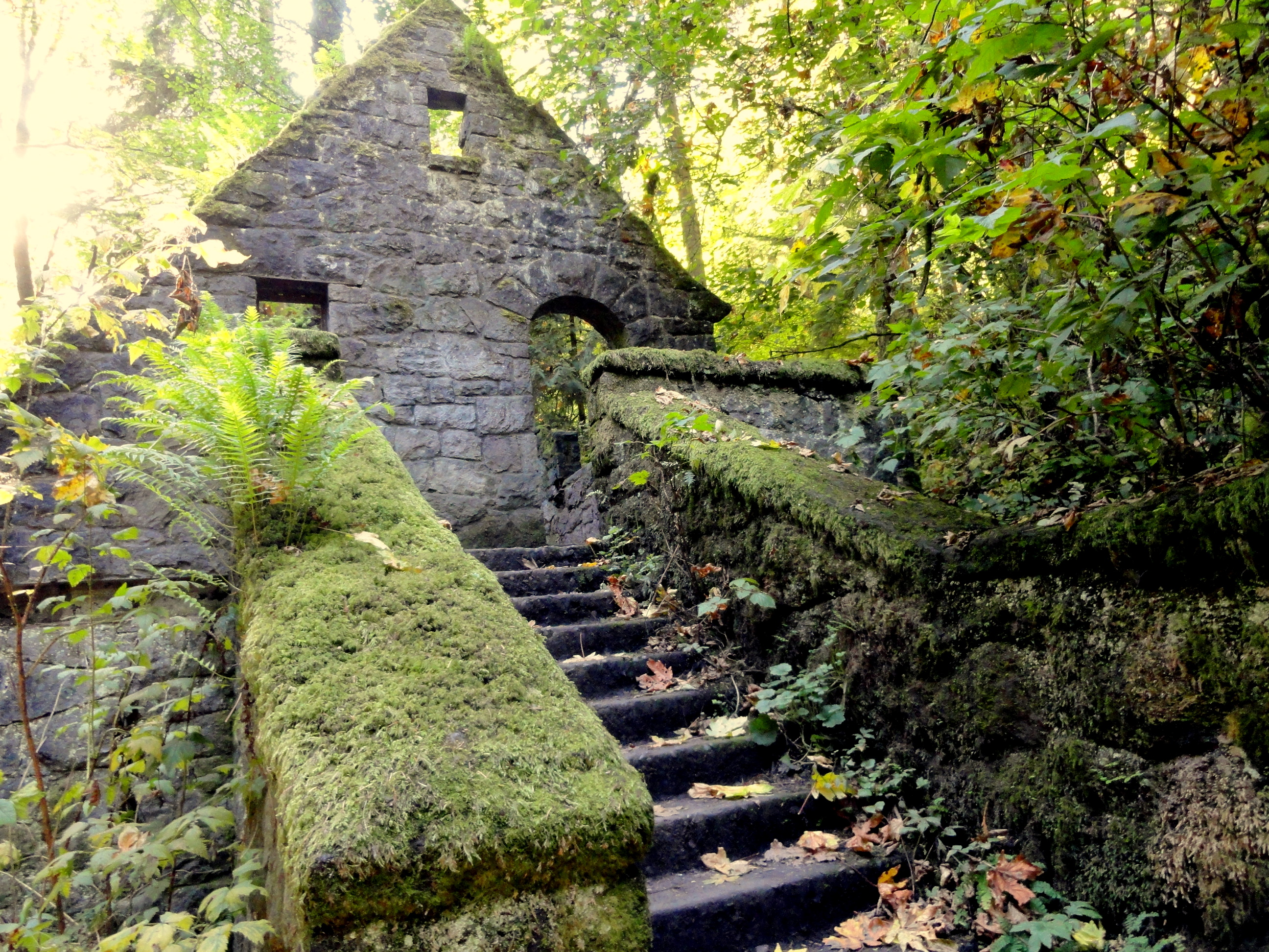 The Story Behind The Forest Park Ruins In Portland