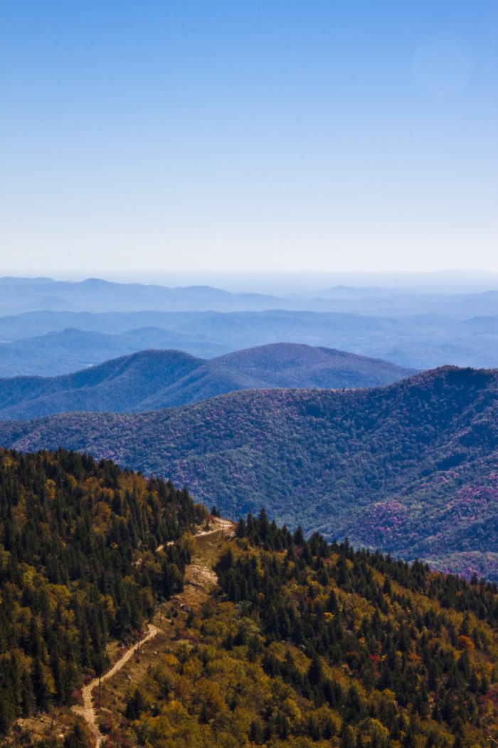 7. Mount Mitchell Scenic Byway