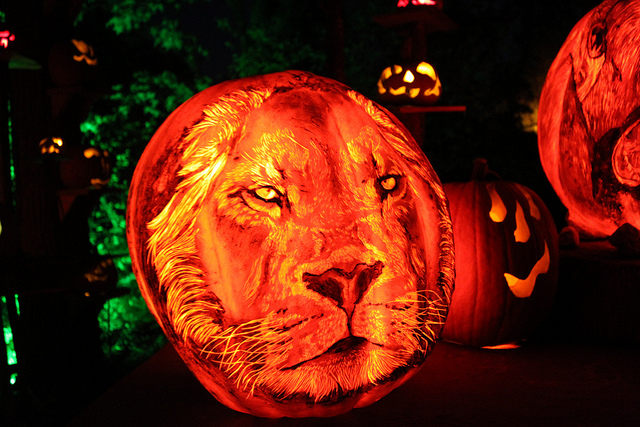 The Jack-O-Lantern Spectacular, the park's annual jack-o-lantern walk, is among the most memorable of happenings.