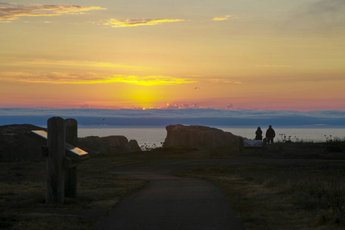 A fantastic interpretive trail winds along the top of the Point, offering visitors a peaceful stroll full of stunning views and interesting information about the local wildlife and history.
