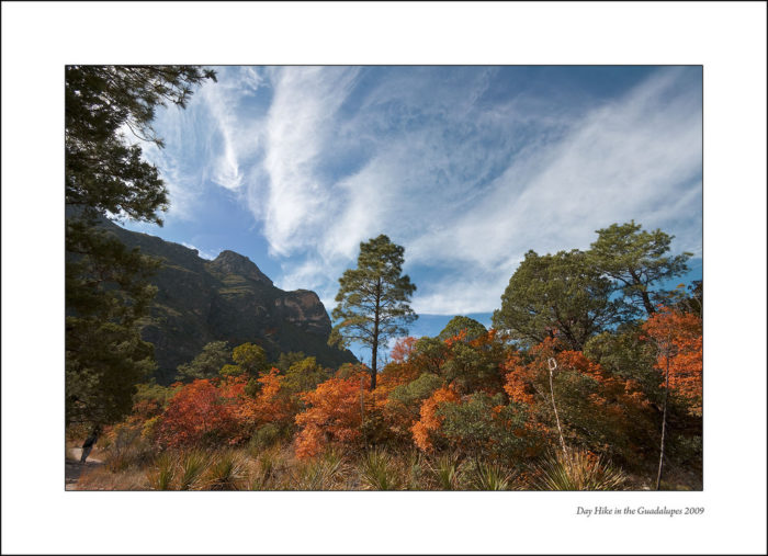 McKittrick Canyon is the ideal destination for a fall hike.