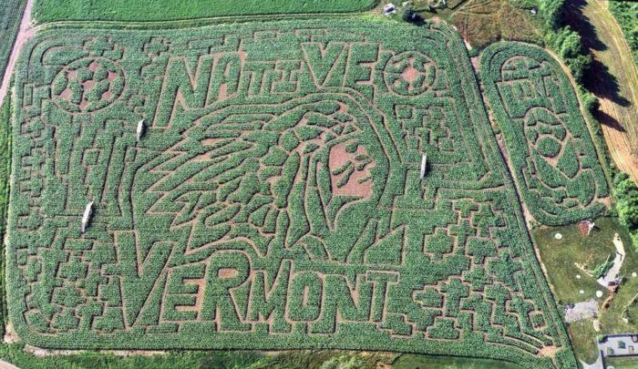 8.  Great Vermont Corn Maze - 1404 Wheelock Road, Danville