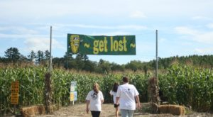Get Lost In These 7 Awesome Corn Mazes In Maine This Fall