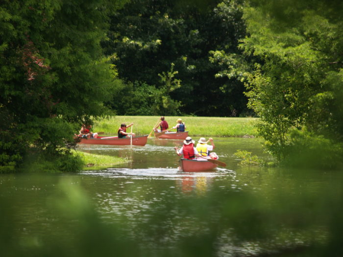 The lakes are also perfect for canoeing and kayaking, and with both guided and self-guided options, there's something for everyone.