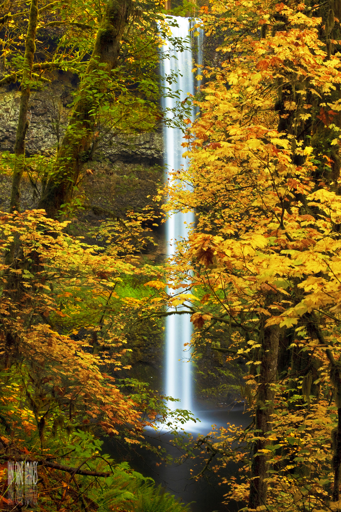 Silver Falls State Park In Oregon Is Perfect For A Fall