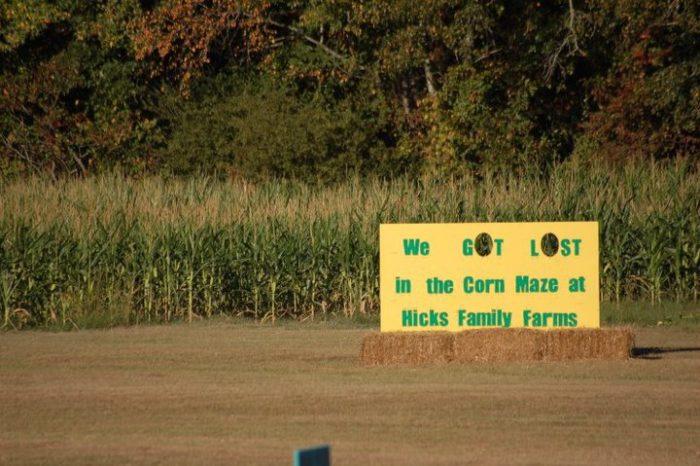 9. Hicks Family Farms