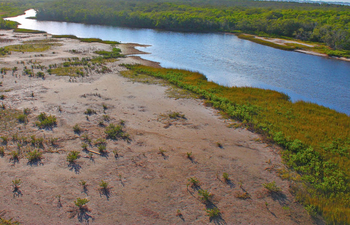 Robinson Preserve is a 600-acre coastal preserve in Bradenton.